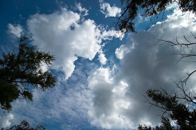 Soffici nuvole bianche in una giornata di sole in un cielo blu in una giornata estiva summer