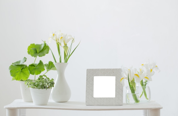 Cornice bianca, piante verdi e fiori primaverili sullo scaffale su priorità bassa bianca