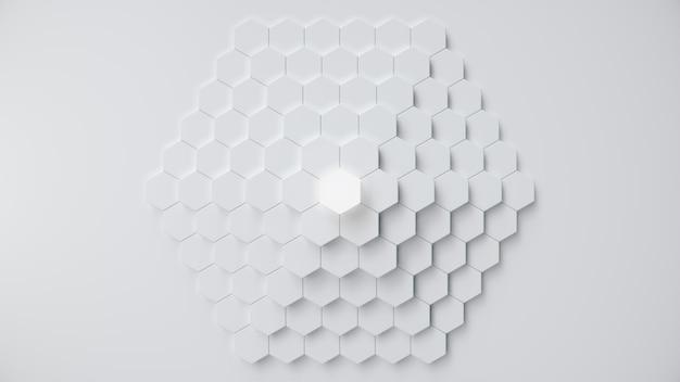 Estratto esagonale geometrico bianco