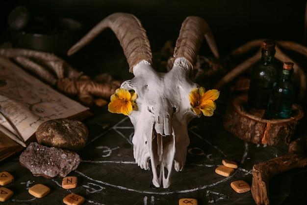 Palella di capra bianca con le corna, vecchio libro aperto con incantesimi, rune, candele ed erbe sul tavolo delle streghe.