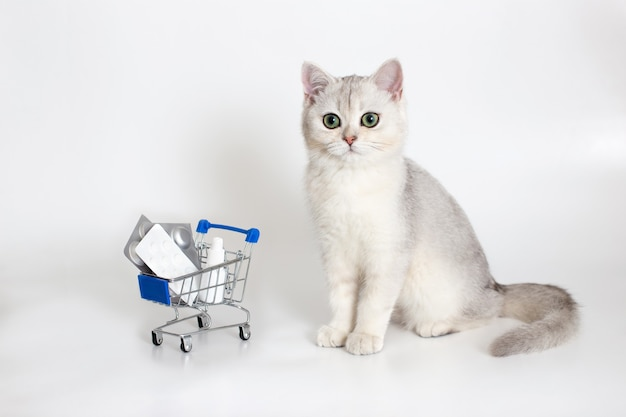 Il gatto bianco e grigio si siede su una superficie bianca con un carrello della spesa pieno di pillole e medicinali. medicinali e prodotti per animali domestici.