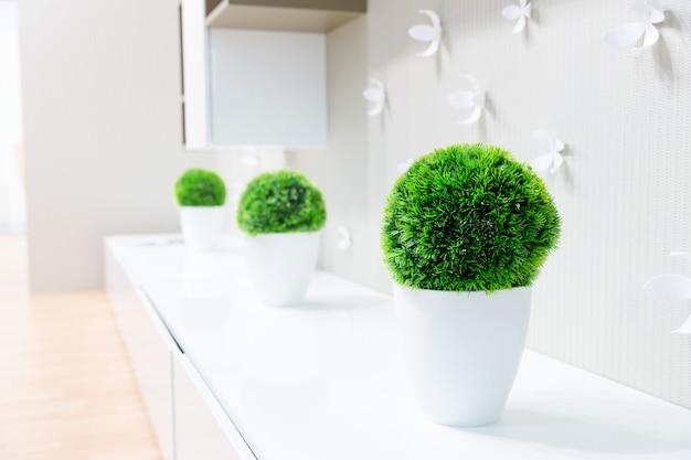 Interno bianco con erba