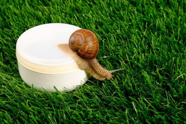 Vaso bianco con cosmetici per la cura della pelle con mucina di lumaca sull'erba verde. bellezza, spa.