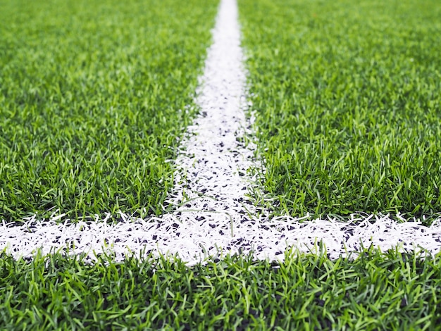 Linea bianca sull'erba verde del campo di calcio o di futsal.
