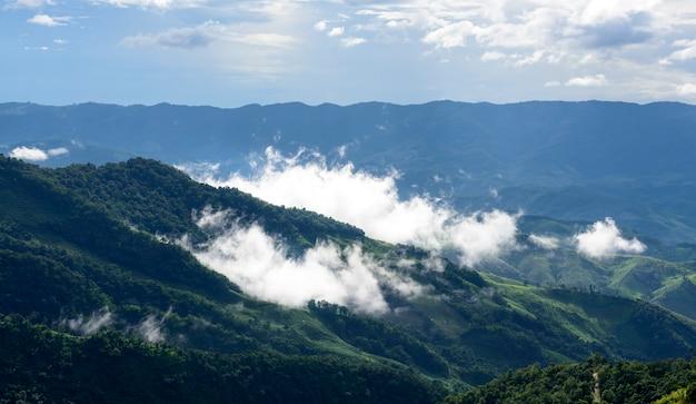 Nebbia bianca che galleggia sopra le montagne complesse che è un fenomeno naturale dopo la pioggia