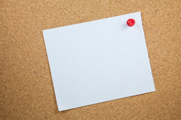 Documenti di nota bianchi sul fondo del bordo del sughero.