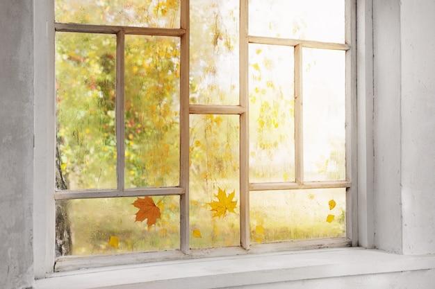 Vecchia finestra in legno bianca con gocce di pioggia e foglie d'autunno