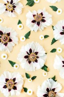 Modello di fiori di camomilla e peonie bianche sulla superficie gialla