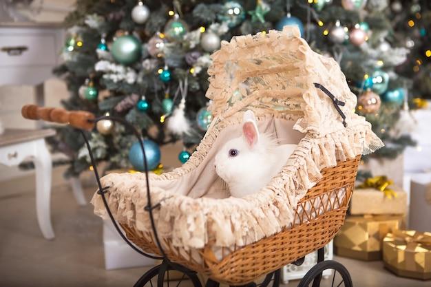 Un coniglio bianco si trova all'interno di un passeggino retrò per bambole
