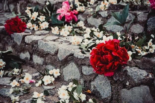 Fiori bianchi e rossi sui gradini di pietra