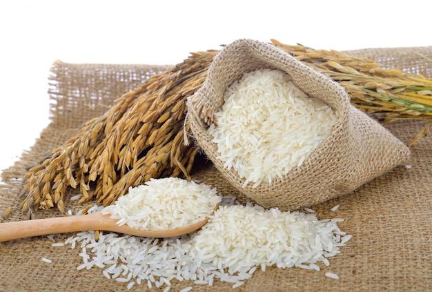 Riso bianco (riso tailandese del gelsomino) e riso non macinato isolato su fondo bianco