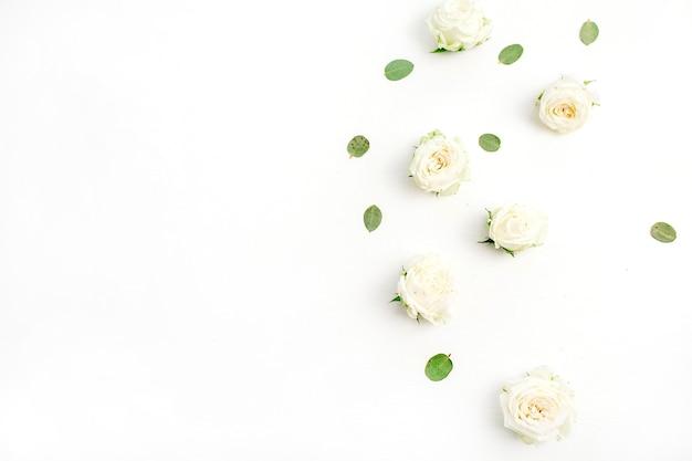 Boccioli di fiori di rosa bianca su sfondo bianco. grasso giacere