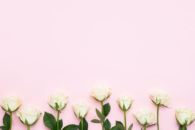 Bordo delle rose bianche sul rosa