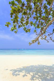 Spiaggia di sabbia bianca e cielo azzurro