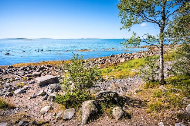 Mar bianco sulle isole solovetsky, pietre sulla riva e pietra di negoziazione
