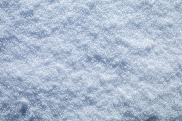 Priorità bassa bianca di struttura del primo piano della neve