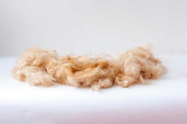 Sulla superficie bianca giace un mucchio di peli di cane tosati.