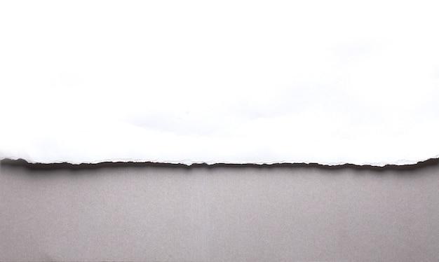 Carta strappata bianca su sfondo grigio. raccolta carta strappo