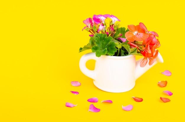 Vaso bianco a forma di annaffiatoio con fiori su sfondo luminoso. concetto di giardinaggio. foto dello studio.
