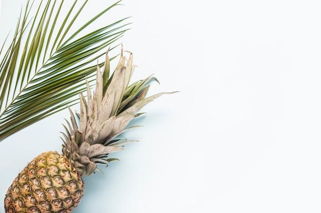 Ananas intero maturo e una foglia di una palma su uno sfondo chiaro.