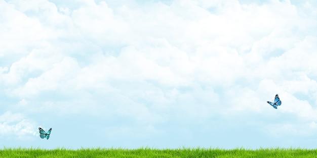 Prato grandangolare e cieli nuvolosi farfalle che volano sull'illustrazione 3d prato