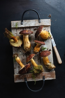 Funghi selvatici dalla foresta pronti per la cottura sul buio. vista dall'alto.