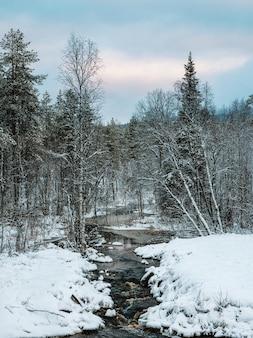 Foresta settentrionale innevata di inverno selvaggio con il fiume in una giornata polare.