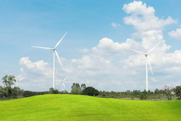 Turbina eolica per l'energia alternativa con in primo piano i campi di erba verde.
