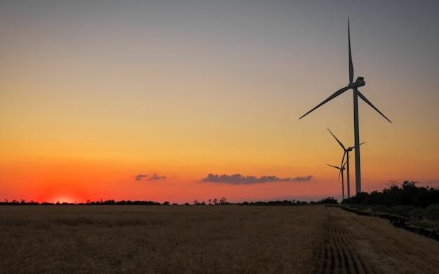 Turbine eoliche e campo agricolo in una giornata estiva. produzione di energia, energia pulita e rinnovabile.