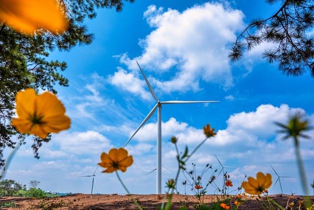 Turbine eoliche sulla montagna con cielo blu e albero del ramo in thailandia.