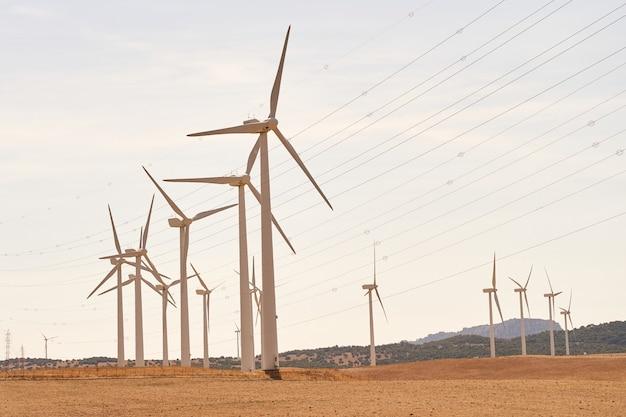 Turbine eoliche che producono elettricità sul campo. concetto di energie rinnovabili. cadiz, spagna.