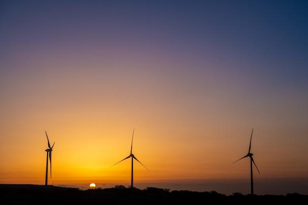 Turbine eoliche all'alba