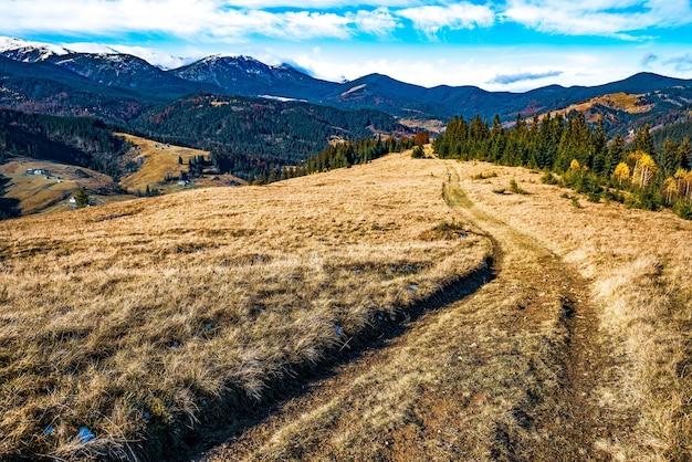 Un tortuoso sentiero di erba secca che conduce lontano nelle splendide colline della natura dei carpazi tra foreste colorate