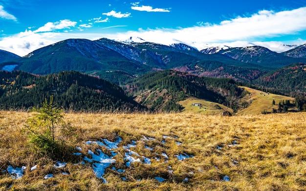 Un sentiero tortuoso di erba secca che porta lontano nelle splendide colline