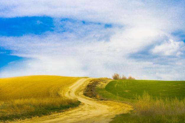 Una strada tortuosa in un campo che separa la terra arabile e la coltivazione del grano un bel cielo