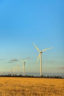 Mulini a vento contro il cielo blu del tramonto su un campo giallo. risorse di energia alternativa. cornice verticale.