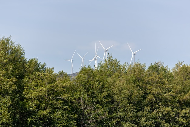 Mulini a vento che generano energia pulita e rinnovabile in un parco eolico