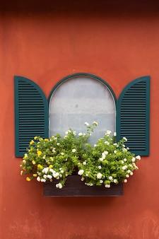 Fiore di finestra