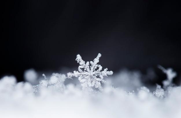 Carta invernale, cristalli di neve, inverno