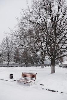 Paesaggio invernale della città. parco invernale coperto di neve. una panchina sotto un albero innevato nel parco cittadino.