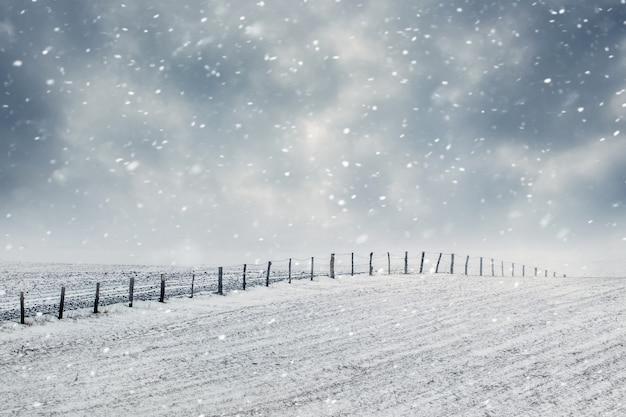Campo invernale con cielo nuvoloso durante una bufera di neve
