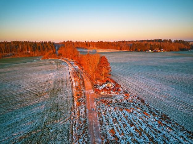 Verde invernale campo agricolo colture invernali sotto la neve. alberi colorati dicembre tramonto scena aerea. strada sterrata rurale. vista dall'alto della campagna. regione di minsk, bielorussia