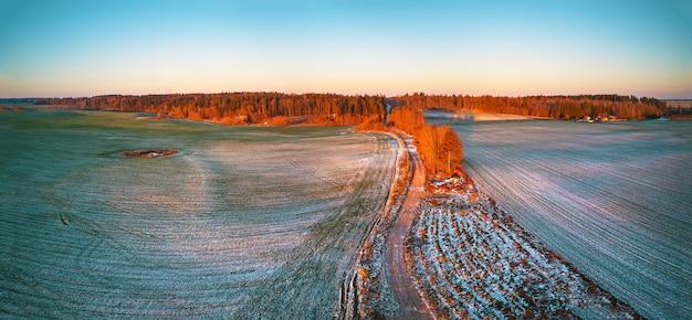 Inverno verde colture invernali del campo agricolo sotto il panorama della neve. alberi colorati dicembre tramonto scena aerea. strada sterrata rurale. vista dall'alto della campagna. regione di minsk, bielorussia