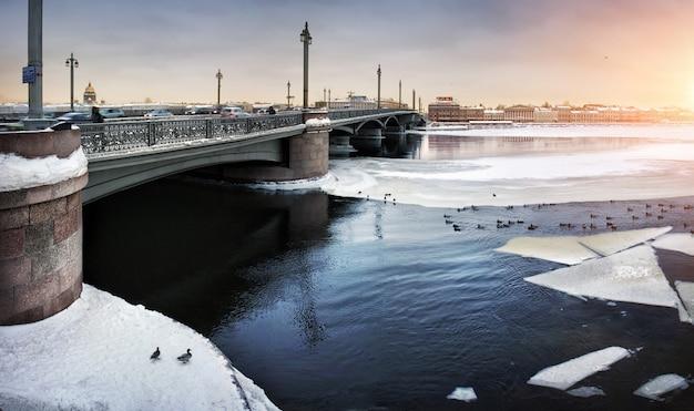 Il ghiaccio invernale va alla deriva su neva e anatre che nuotano nell'acqua vicino al ponte di san pietroburgo