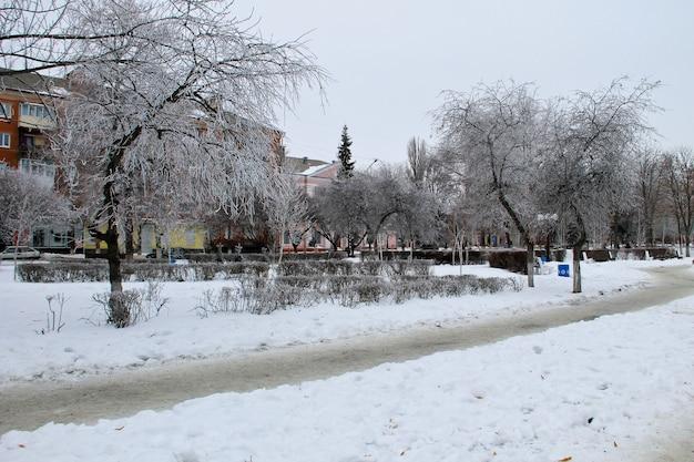 Paesaggio invernale nel parco cittadino