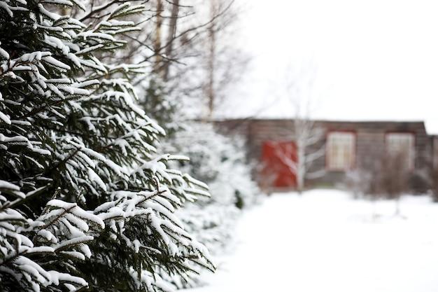 Paesaggio invernale di campi di campagna e strade nella neve