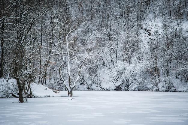 Paesaggio invernale, un lago ghiacciato nella neve