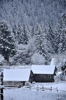 Paesaggio invernale in montagna