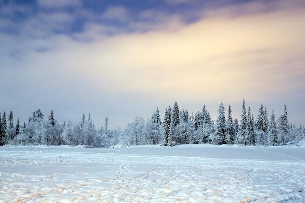 Paesaggio invernale di notte