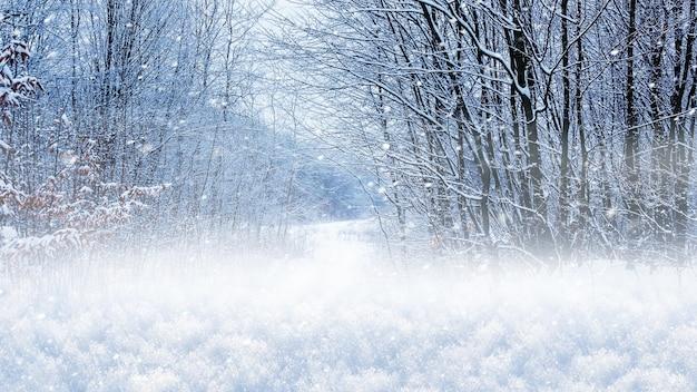 Paesaggio invernale, manto nevoso nella foresta su uno sfondo di alberi durante una nevicata